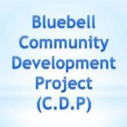 Bluebell CDP Men's Group